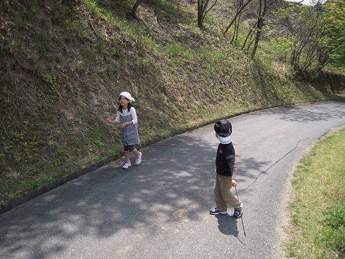 s-大自然の大冒険.jpg